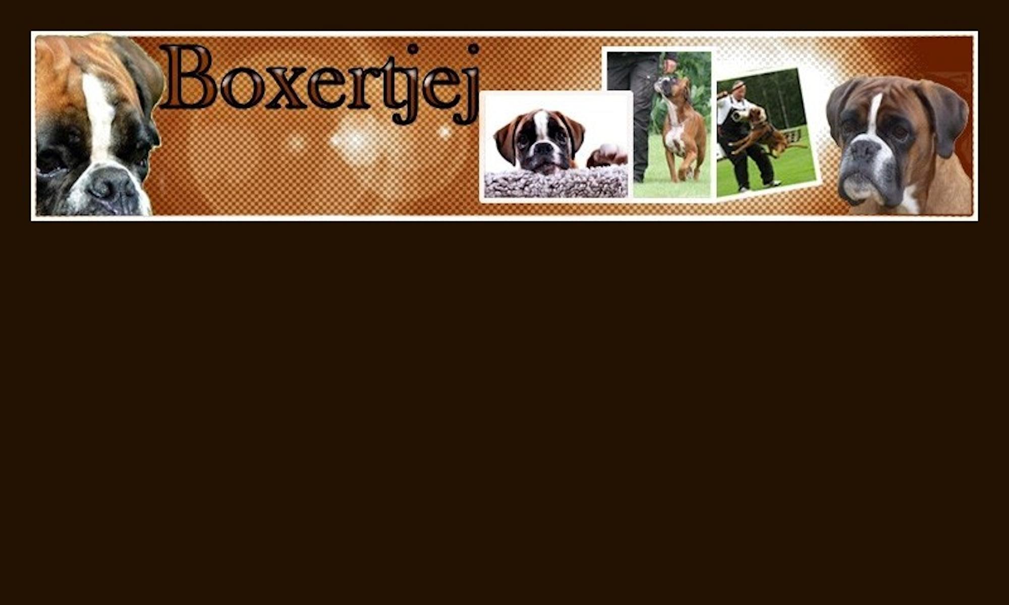 Välkommen till Boxertjej